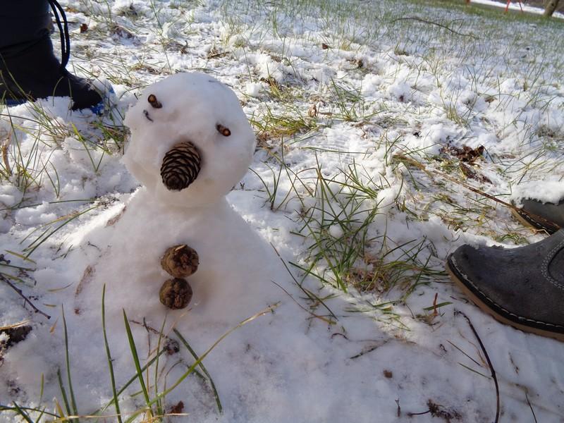 Skupina Metuljčki in prvi sneg